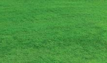 Preparing Your Lawn for Winter